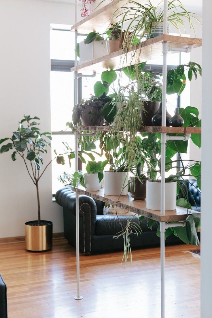 Plant Room Dividers 44 Best Plant Partitions And Living Wall Room
