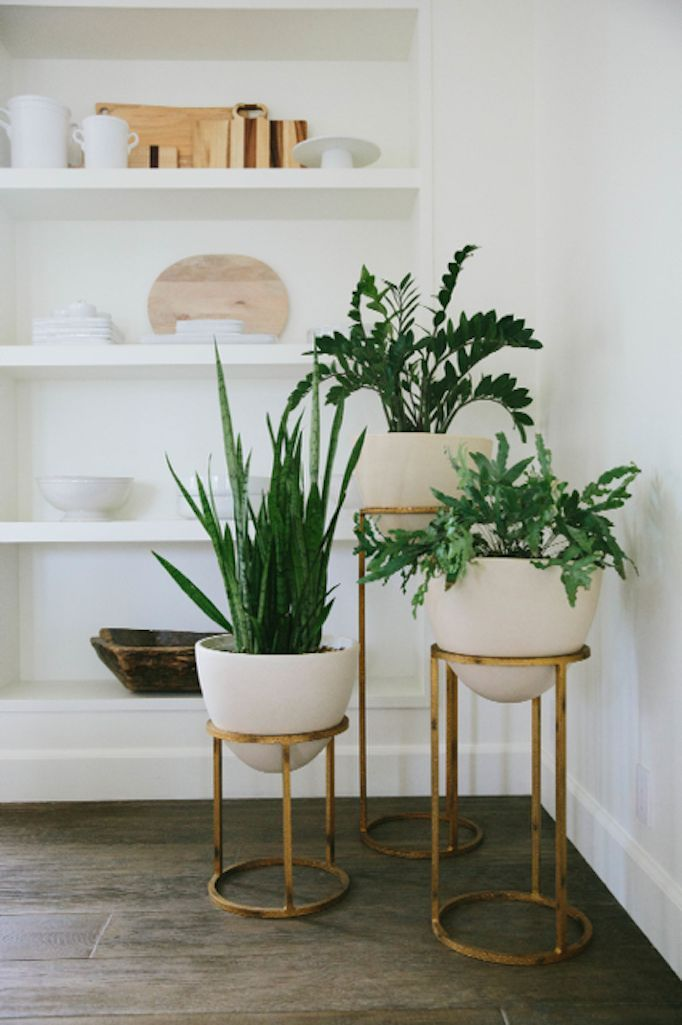 Plant Interior Design 10 Small Home Interior Design Ideas For Styling Awkward Corners .