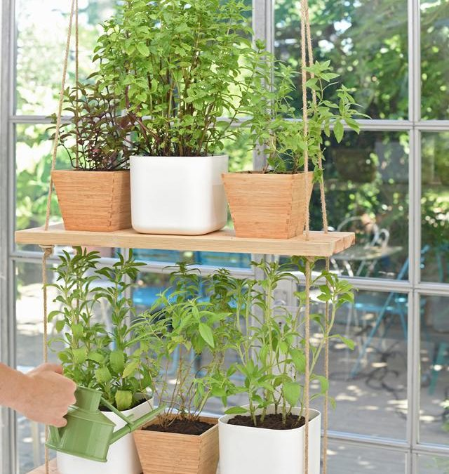 Small Apartment DIY: Suspended Mini Garden by The Nest