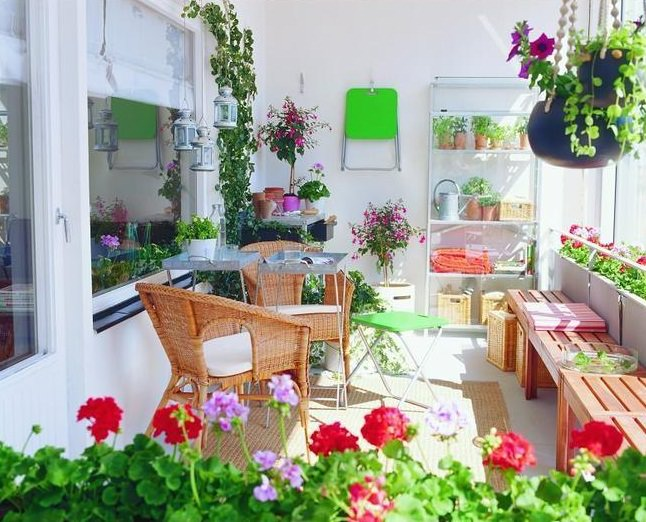 Tips and Tricks for Building a Lush Balcony Garden