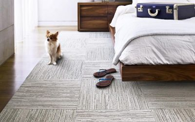 Small Apartment Buying Guide: The Best Bedroom Floor Options for Your Home